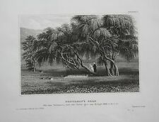 1840 - Longwood House Napoleon Grab St Helena Insel engraving gravure Stahlstich