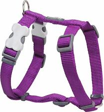 Red Dingo Plain PURPLE Harness for Dog or Puppy   Sizes XS - LG   FREE P&P