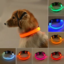 CANE ANIMALE DOMESTICO LED Collare Lampeggiante luminoso regolabile Safety nylon