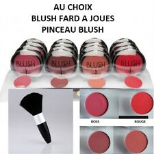 BOITIER FARD A JOUE BLUSH ROSE ROUGE MARRON ORANGE MAKE UP PINCEAU NEUF MAC121