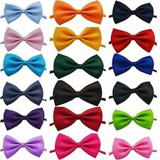 CANE CRAVATTINO REGOLABILE animale domestico COLLARE Toelettatura per gatto o