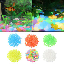23C2 8165 100Pcs/Set Glow In The Dark Pebbles Stone Home Outdoor Garden Aquarium