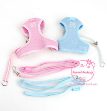 DHN DOG HARNESS AND LEAD SET *POSH POOCH* CHIHUAHUA + PUPPY