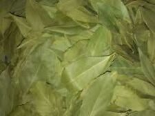 BAY LEAVES DRIED - KITCHEN - COOK - NATURAL - LEAVES - SPICE - DINE