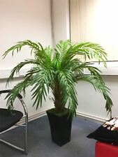 4.5ft Artificial Phoenix Palm Tree in Tubus Gloss White Pot Large Office Plant