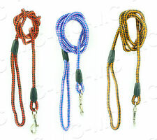 Nylon Pet Dog Lead Puppy Walking Slip Collar Rope Strap Strong Training Leash