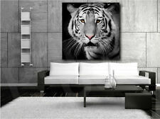 Tiger Head Black and White Canvas Art Poster Print Home Decor
