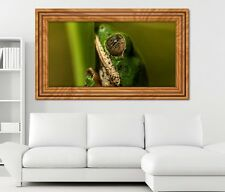 3D sticker mural Grenouille Animal Amazonie Brésil autocollant 11K415