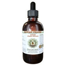 Ginger (Zingiber Officinale) Organic Dried Root Liquid Extract