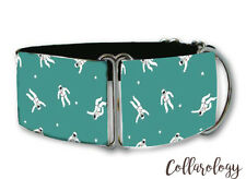 Mini space suit dog collar by Collarology