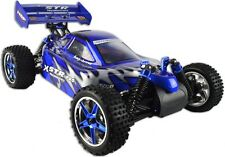 XSTR R-SPEC 1:10 Pro Brushless Electric Buggy Radio Remote Control RC Car