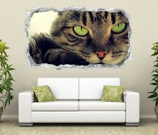 3D Sticker mural Chat verte Yeux Chatons Autocollant Mural Passage 11N366