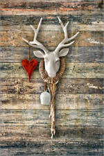 Aluminio-Dibond Deer Heart - ARTSHOT - Photographic Art