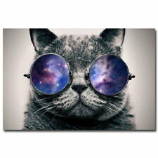 74497 Funny Galaxy Glasses Cat Wall Print Poster Affiche
