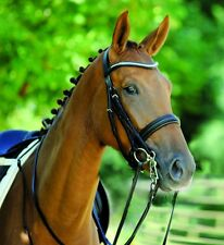 New Schockemohle Brisbane Cob Double Bridle + Reins Black