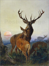Cuadro sobre lienzo A deer and a deer at sunset - Carl Friedrich Deiker