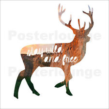 Aluminio-Dibond Deer - stay wild and free - GreenNest