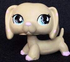 Littlest Pet Shop Dachshund OOAK Custom, Hand Painted Tan pink Polka Dot #909
