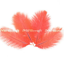 Coral Ostrich Feather Fluffy Wedding Costume Party Centerpiece Craft Decor