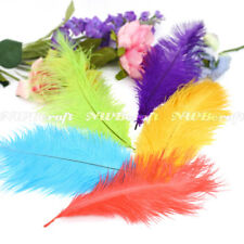 Mixing Colour Ostrich Feather  Wedding Costume Party Centerpiece Craft Deco