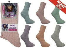 12 Pairs Womens Coloured Short Boot Sock Everyday Thick Ankle Socks Size 4-7 New