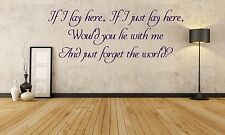 Chasing Cars, Snow Patrol, Song Lyrics, wall art vinyl decal sticker