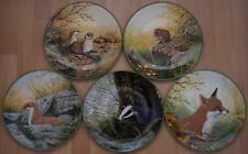 ROLLINSON'S PORTRAITS OF NATURE COLLECTOR PLATES by W G ROLLINSON ROYAL DOULTON