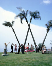 It'S A Mad Mad Mad Mad World Rare Color Cast By Big 'W'' Palm Trees 8x10 Photo