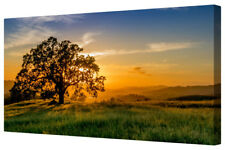 Stunning Tree Silhouette Colourful Sunrise Large Canvas Picture Wall Art