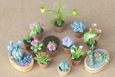 1:12 Scale Cactus In Ceramic Pots Tumdee Dolls House Miniature Garden Accessory