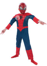 Kids Size Muscle Chest Spiderman Costume