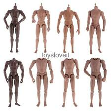 """1:6 Scale Male Body 12"""" Action Figure Toys for Hot Toys Head Sculpt Display New"""