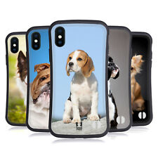HEAD CASE DESIGNS POPULAR DOG BREEDS HYBRID CASE FOR APPLE iPHONE X