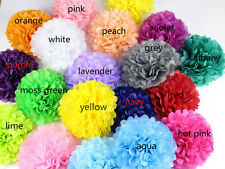 "10 Mixed 6"" 10"" wedding party decorations tissue paper pompoms pom poms 24 color"