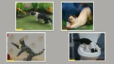 1:12 scale dolls house miniature cute  resin cats 4 to choose from.