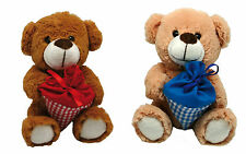 Bear Stuffed Teddy to First day of school Sweet cone red blue