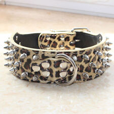 "Spiked Studded Dog Collar 2"" Leather Dog Collars for Pit Bull Terrier Cathro"