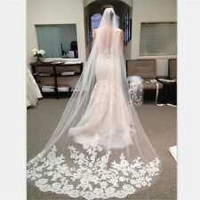 Appliques Tulle Long Cathedral Wedding Veil Lace Edge Bridal Veil with Comb