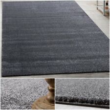 Contemporary Stylish Carpet Area Rugs Bedroom Mat Hall Runner in Charcoal Grey