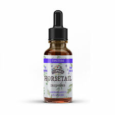 Horsetail Tincture, Organic Horsetail Extract Drops Equisetum arvense Dried Herb