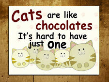 Metal Sign cats are like chocolate funny decorative tin wall door plaque gift