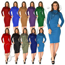 Womens Celebrity Inspired Turtle Polo Neck Ladies Long Sleeve Bodycon Midi Dress