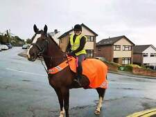 GEE TAC HORSE FLEECE HI VIZ VIS RIDE ON WATERPROOF EXERCISE SHEET WRAP ROUND