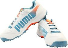 Puma Evospeed Cricket Rubber 3.2 Running Shoes