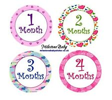 First Year Monthly Milestone Age Baby Belly Stickers - Multiple designs