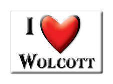 SOUVENIR USA - COLORADO FRIDGE MAGNET AMERICA I LOVE WOLCOTT (EAGLE COUNTY)