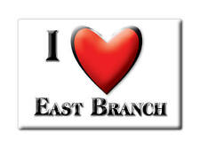 SOUVENIR USA - NEW YORK FRIDGE MAGNET I LOVE EAST BRANCH (DELAWARE COUNTY)
