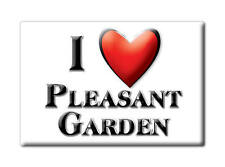 SOUVENIR USA - NORTH CAROLINA MAGNET I LOVE PLEASANT GARDEN (GUILFORD COUNTY)