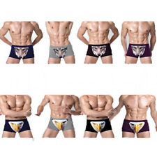 Novelty 3D Printed Men's Boxer Briefs Trunks Underwear Vivid Animal Eagle Wolf