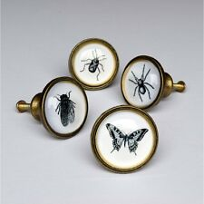 Insect Drawer Knobs Spider Fly Beetle Cupboard Door Handles Pulls Vintage Style
